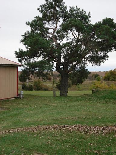 Eagle Ridge Rv Park Eagleville Missouri Us Parkadvisor