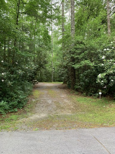 Van Hook Glade Campground - Highlands, North Carolina US