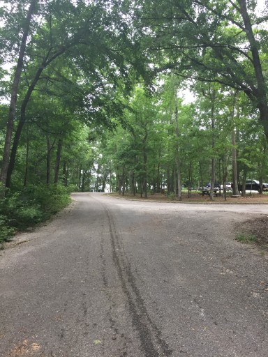 Cagle Nf Campground New Waverly Texas Us Parkadvisor